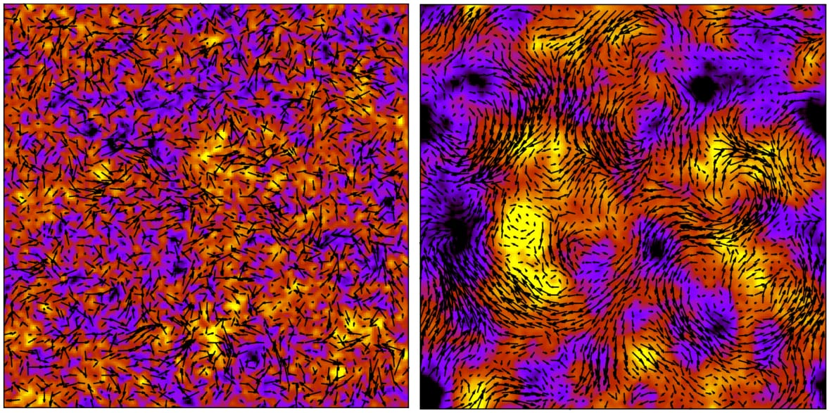Snapshots showing the fluid velocity from Lattice Boltzmann simulations of pusher suspensions and the transition to turbulence. The vectors denote the in-plane fluid velocity, while the colour map shows the out-of-plane component.