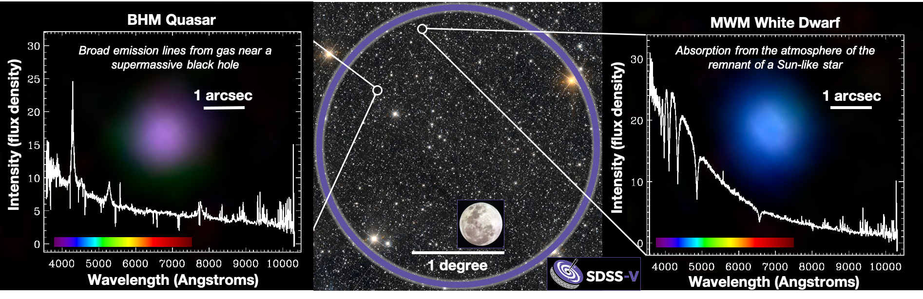 CENTRAL IMAGE: a single field of SDSS-V observations. Purple circle indicates the telescope's field-of-view on the sky, with the full Moon shown as a size comparison.  LEFT: optical-light spectrum of a quasar. RIGHT: image and spectrum of a white dwarf. CREDITS: Hector Ibarra Medel, Jon Trump, Yue Shen, Gail Zasowski, and the SDSS-V Collaboration. Central background image: unWISE / NASA/JPL-Caltech / D.Lang (Perimeter Institute).