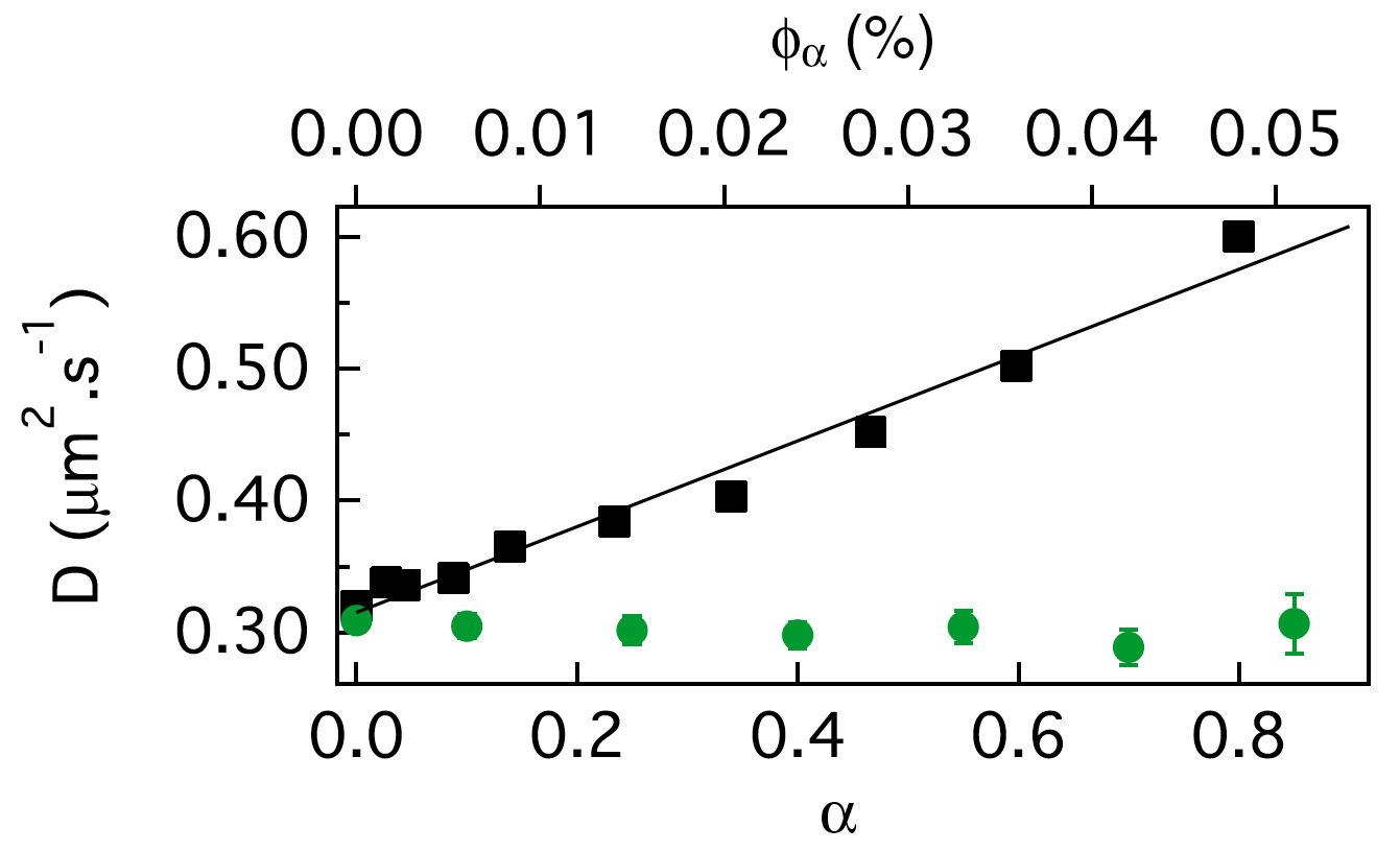Figure from Wilson et al. (article 018301) showing their measurement of the diffusion coefficient, D, of non-motile bacteria (vertical axis) in a suspension of motile organisms (volume fraction φα given by the upper axis), demonstrating an enhancement of D by the motile organisms. Both D and φα were measured using their new high-throughout method of differential dynamic microscopy.