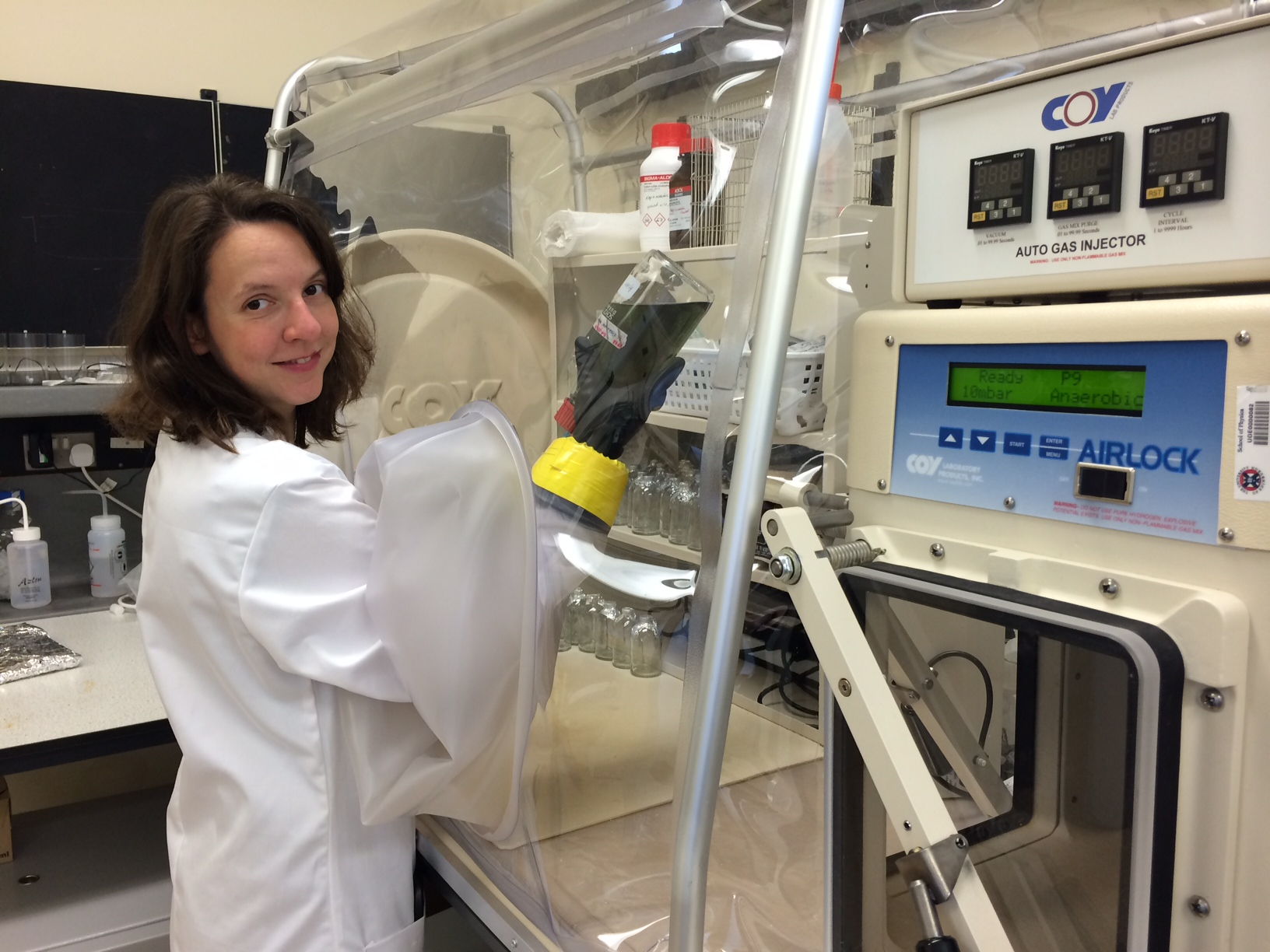 Petra Schwendner working in the anaerobic chamber.